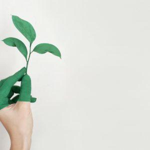 impact écologique du travail à domicile